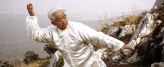 Taichi Master in China moves objects with chi energy