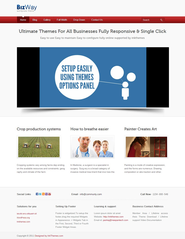 Biz way WordPress Theme