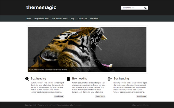 Thememagic WordPress theme