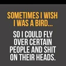 Quote If I Were A Bird
