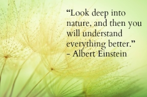Look To Nature Earth Quote